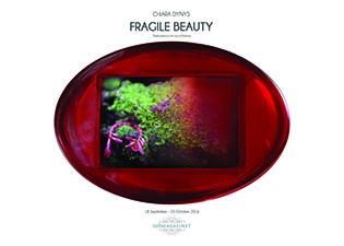 Fragile beauty mostra Dynys